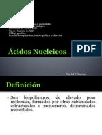 Ácidos Nucleicos 1B