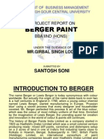 bergar Paint -