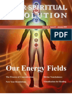 Our Energy Fields Your Spiritual Revolution