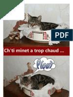 Chti Minet a Trop Chaud