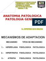 1er_PARCIAL_Anatomia_Patologica chet
