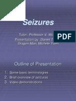 Seizures July 4, 2013
