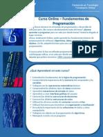 Brochure Capacity Curso Intro Prog Online