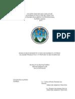 Proyecto Ensayo Final de Artesania (Botas de Pastores)