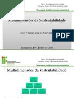 270259-2-_Multidimensões_da_Sustentabilidade