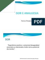 Dor e Analgesia