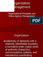 Lecture 5 Organization Management