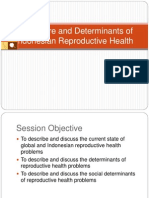 The Figure and Determinants of (Indonesian)RH.ppt