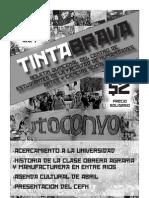 Tinta Brava, Año 1, N° 1