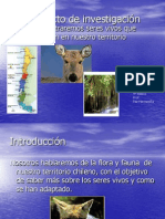 power-zonas-geo-y-flora-y-fauna-1224550553528912-9