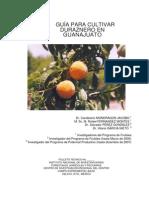 Manual Durazno 2007