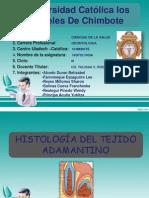 Exposicion de Histologia 27