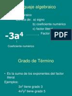 Diapo lenguaje algebraico