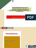 Programación PpR 2012