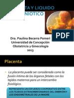 Placenta y Liquido Amniotico_pauli