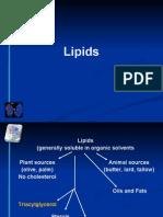 fish Lipids