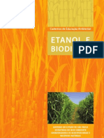 11-EtanoleBiodisel