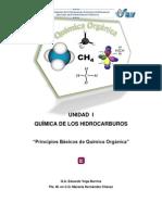 Principiosbasicosdequimicaorganica.pdf