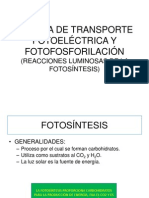 5).- Cadena de Trasporte Fotoelectricoy Fotofosforilacion