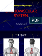 Anatomy and Physiology of the Heart (Rev)