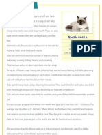 Cats - Reading comprehension for kids