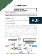 Cogeneration.pdf