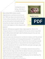 Dogs - Reading comprehension for kids