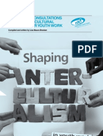 Shaping Interculturalism Report 2009