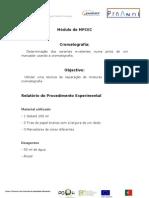 Relatório do Procedimento Experimental 2