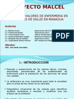 Presentación Proyecto MALCEL 22 Junio 2010