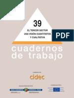 CIDEC_ElTercerSectorUnaVisionCuantittativaYCualitativa_2004