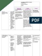 SCR 270 L & D Care Plan
