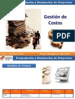 Franco Castellano Silva-Formulacion y Evaluacion de Proyecto - Gestión de Costos Tema 6