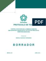Protocolo de Tesis CINVESTAV - IPN.