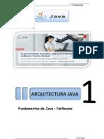 Manual Java Completo