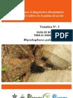 Guía de bolsillo para el manejo de Rhynchophorus palmarum