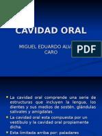 Cavidad Oral -> Futura  Médica