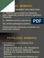 PATOLOGIA MAMARIA -> Futura Médica