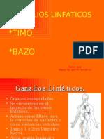 GANGLIO BAZO TIMO -> Futura Médica