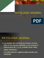 Patologia Vaginal -> Futura Médica