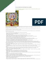 Reiki - Técnicas Práticas Em Partes DoCorpo.pdf