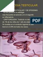 PATOLOGIA TESTICULAR -> Futura Médica