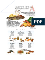 Vitaminas en Los Distintos Alimentos