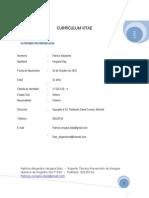 Curriculum Patricio Vergara