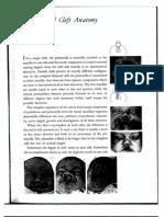 02 - Bilateral Cleft Anatomy 19