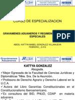CURSO_GRAVAMENES_ADUANEROS