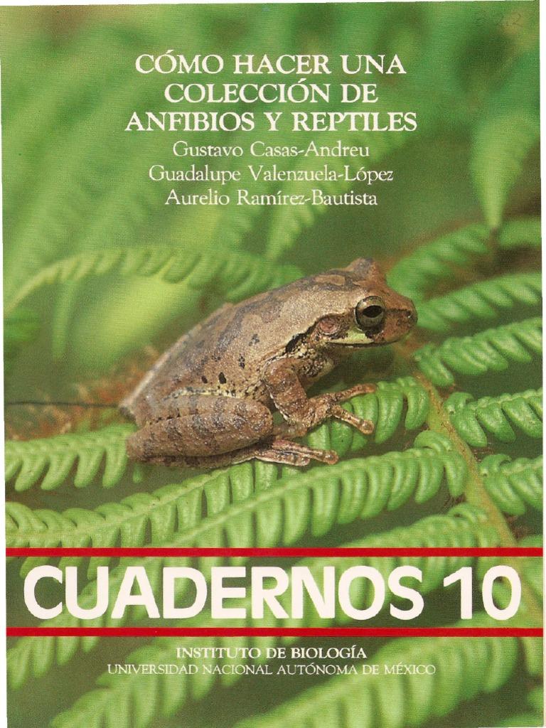 Cómo hacer una colección de anfibios y reptiles