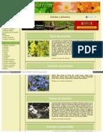 Arboles Arbustos Florpedia Com