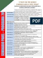 Seminario Panel 2013 Programa (1)