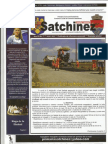 Jurnalul de Satchinez Iulie 2013